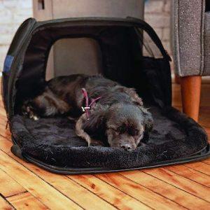 trasportino cani innopet carry me sleeper