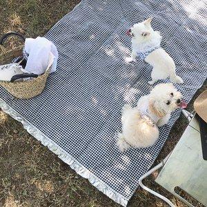 PICNIC MAT tappetino Louisdog